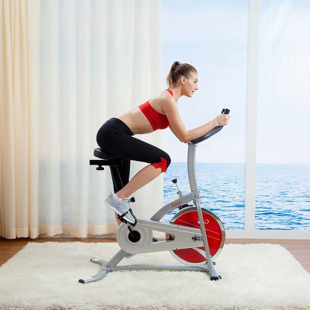 Sunny Health and Fitness Indoor Cycling Bike SF- B1203 review
